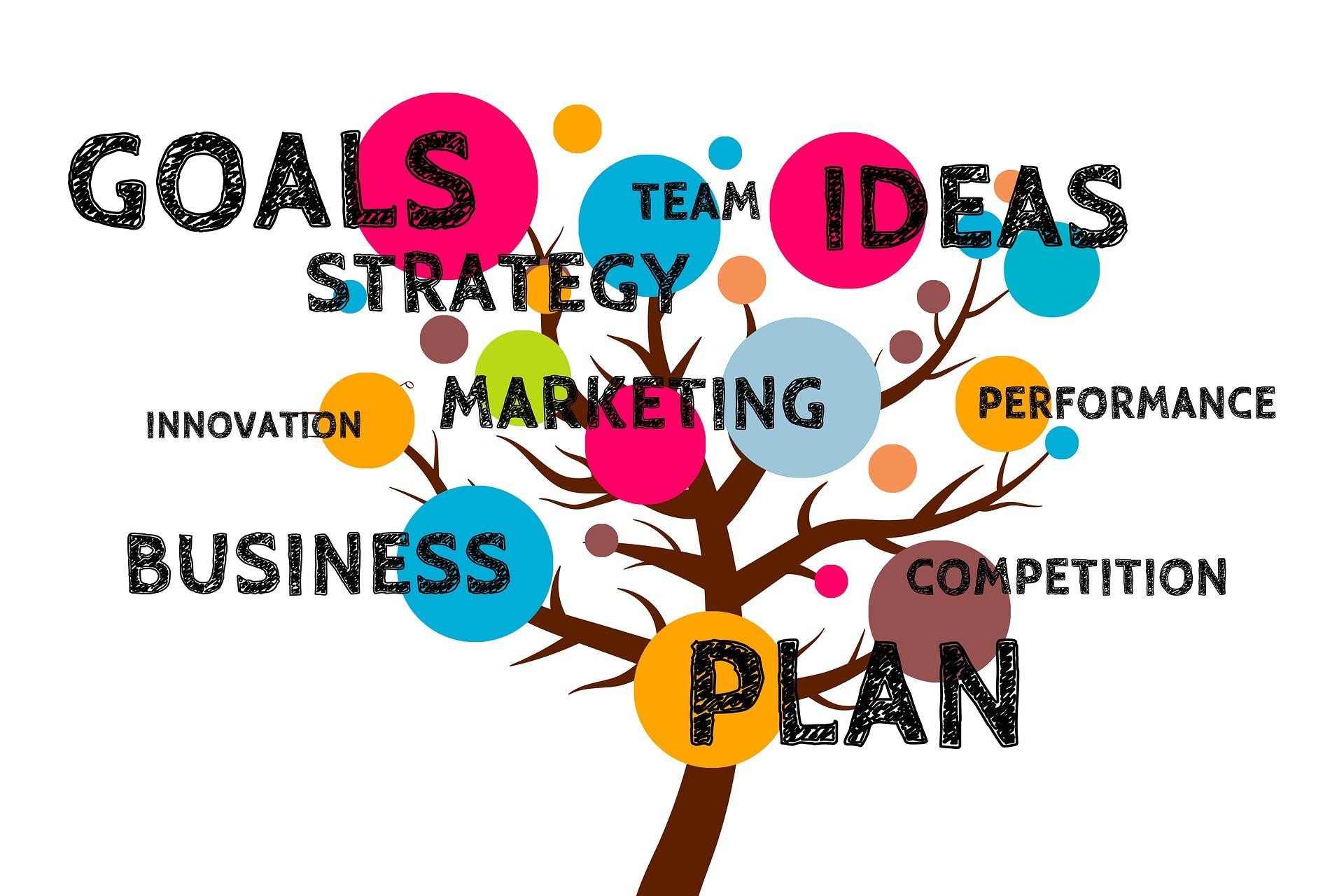 startup_goals